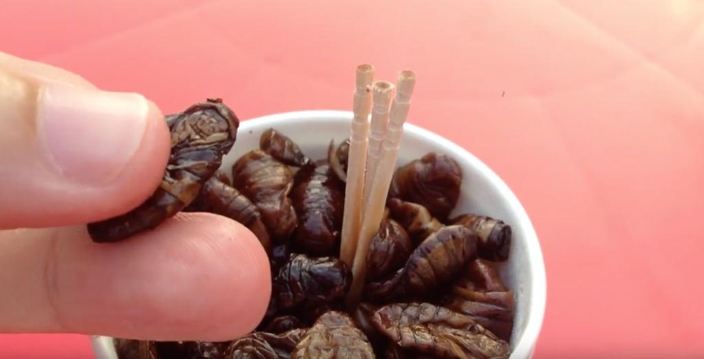 gusanos en vaso